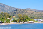 Marathonas Aegina | Griekenland | Foto 3 - Foto van De Griekse Gids