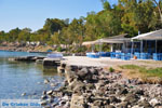 Aeginitissa | Aegina | De Griekse Gids foto 14 - Foto van De Griekse Gids