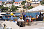 Souvala   Aegina   De Griekse Gids foto 3 - Foto van De Griekse Gids